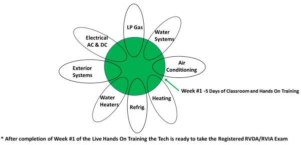 NRVTA-training-sunflower-diagram